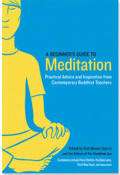 A Beginners's Guide to Meditation #25
