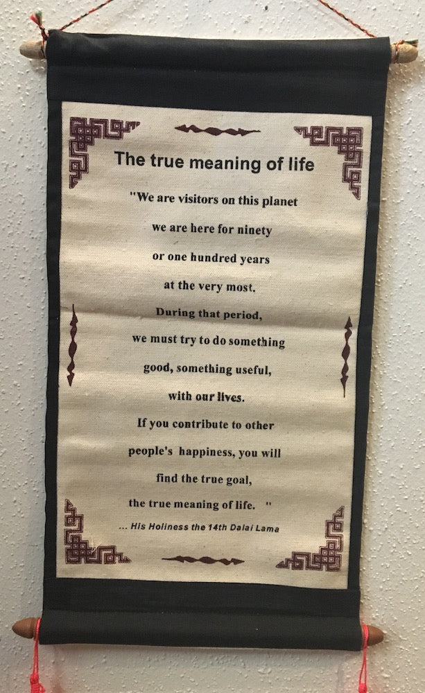 True Meaning of Life: Dalai Lama #8