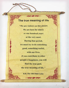 True Meaning of Life #3