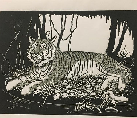 Guy Colwell - Tiger Print