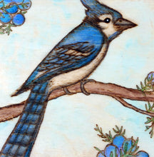 Blue Jay Woodburning and Watercolor Painting