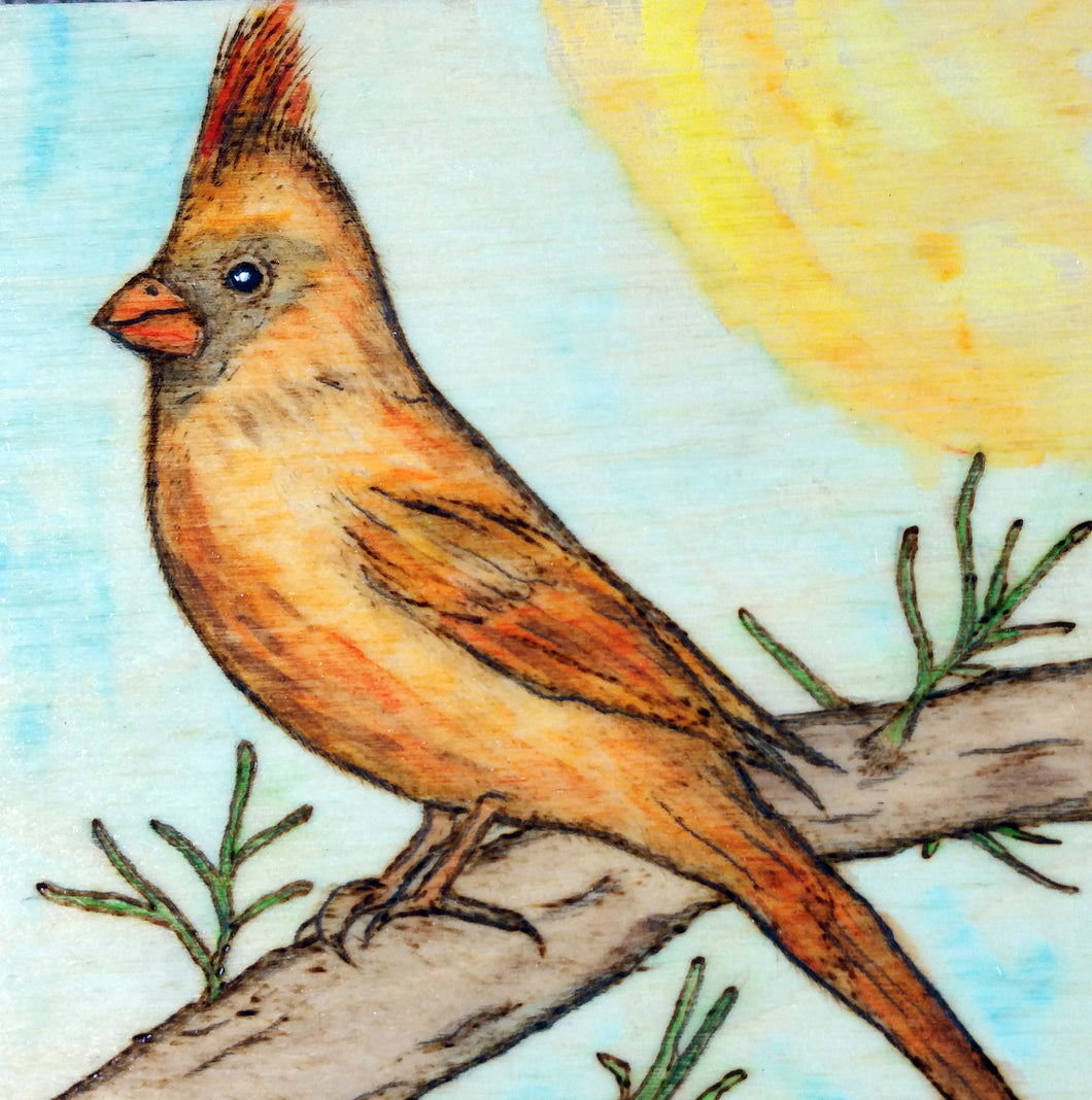 Cardinal Woodburning and Watercolor Painting