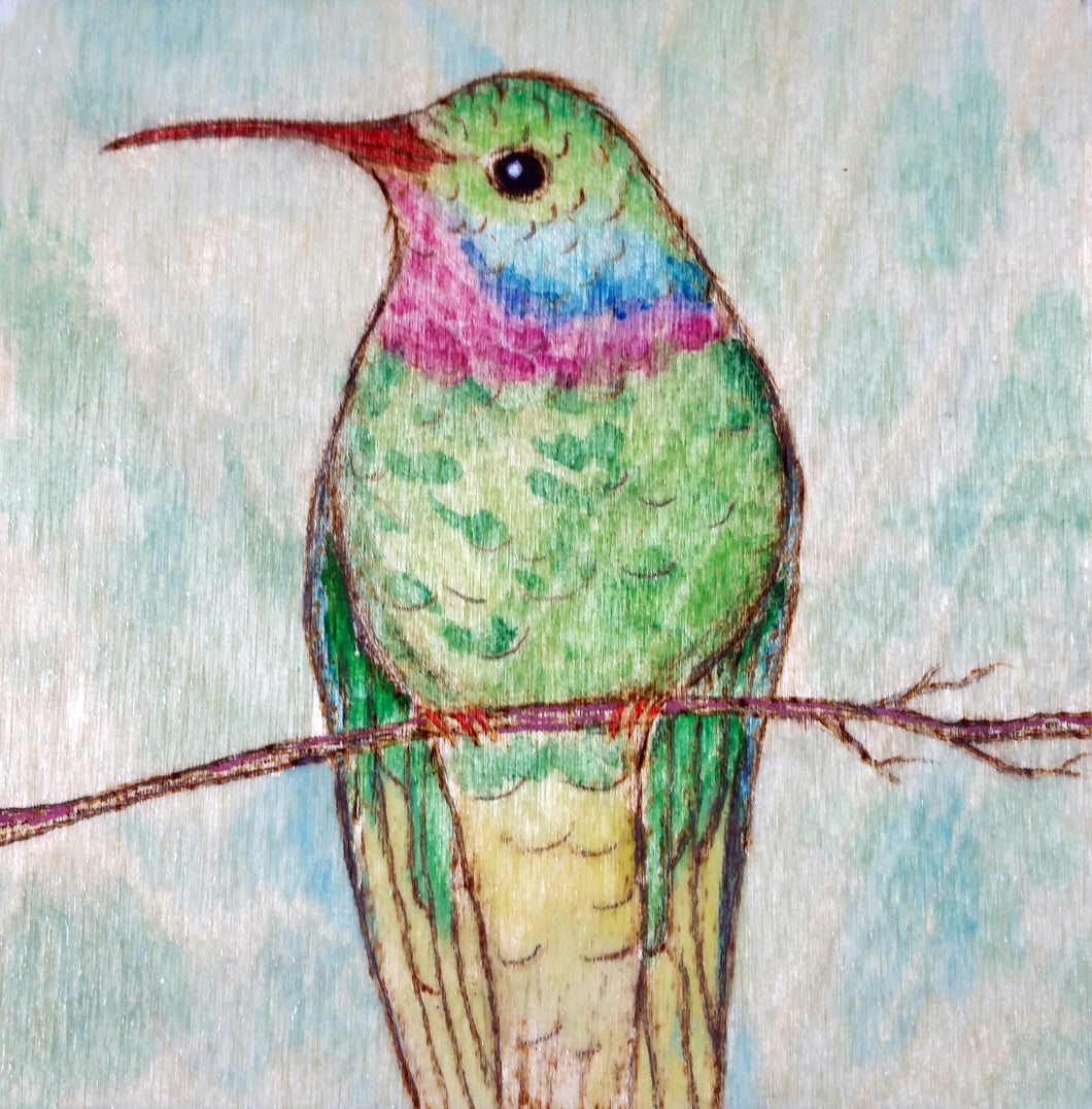 Hummingbird Woodburning and Watercolor Painting