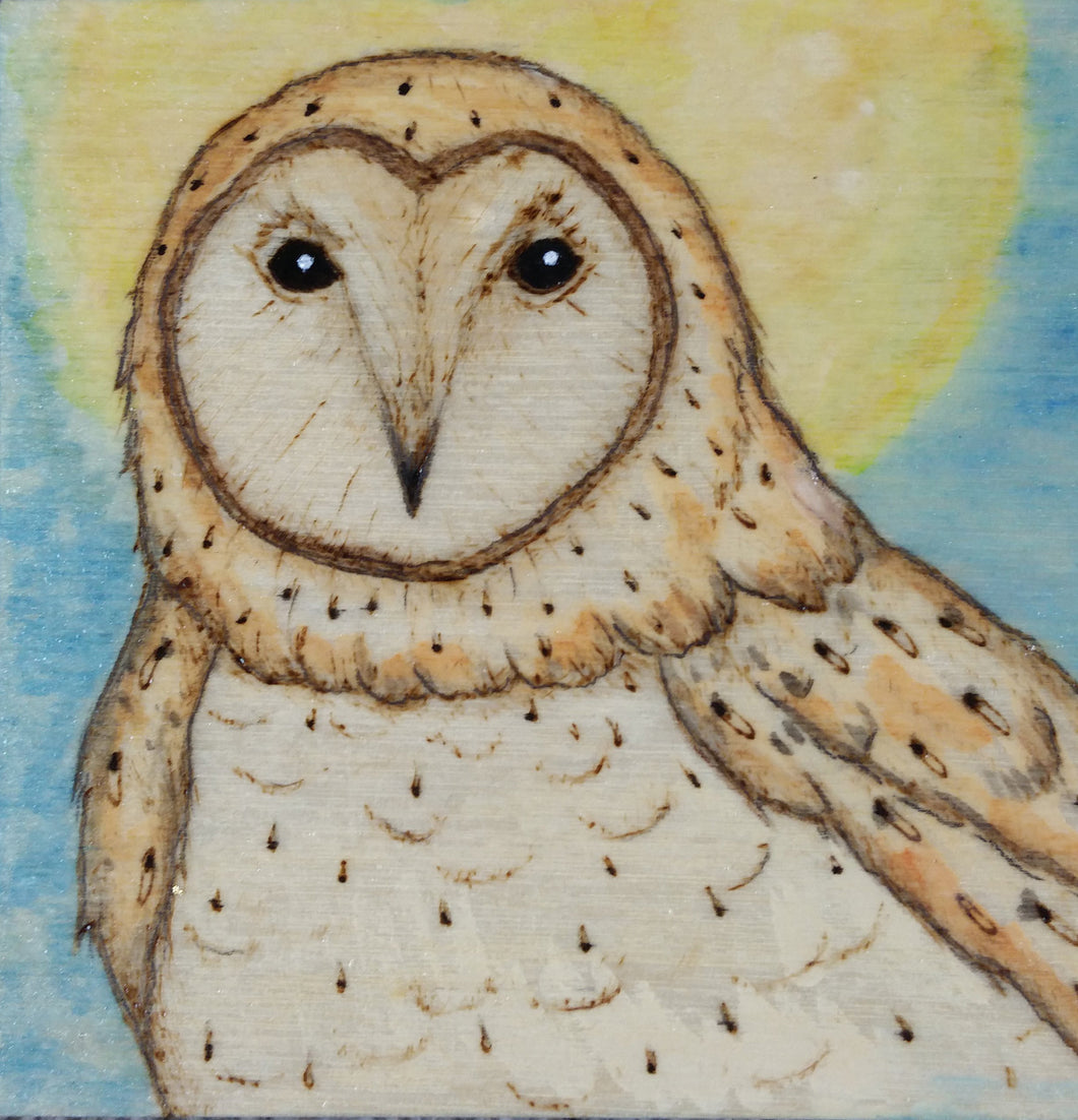 Owl Woodburning and Watercolor Painting