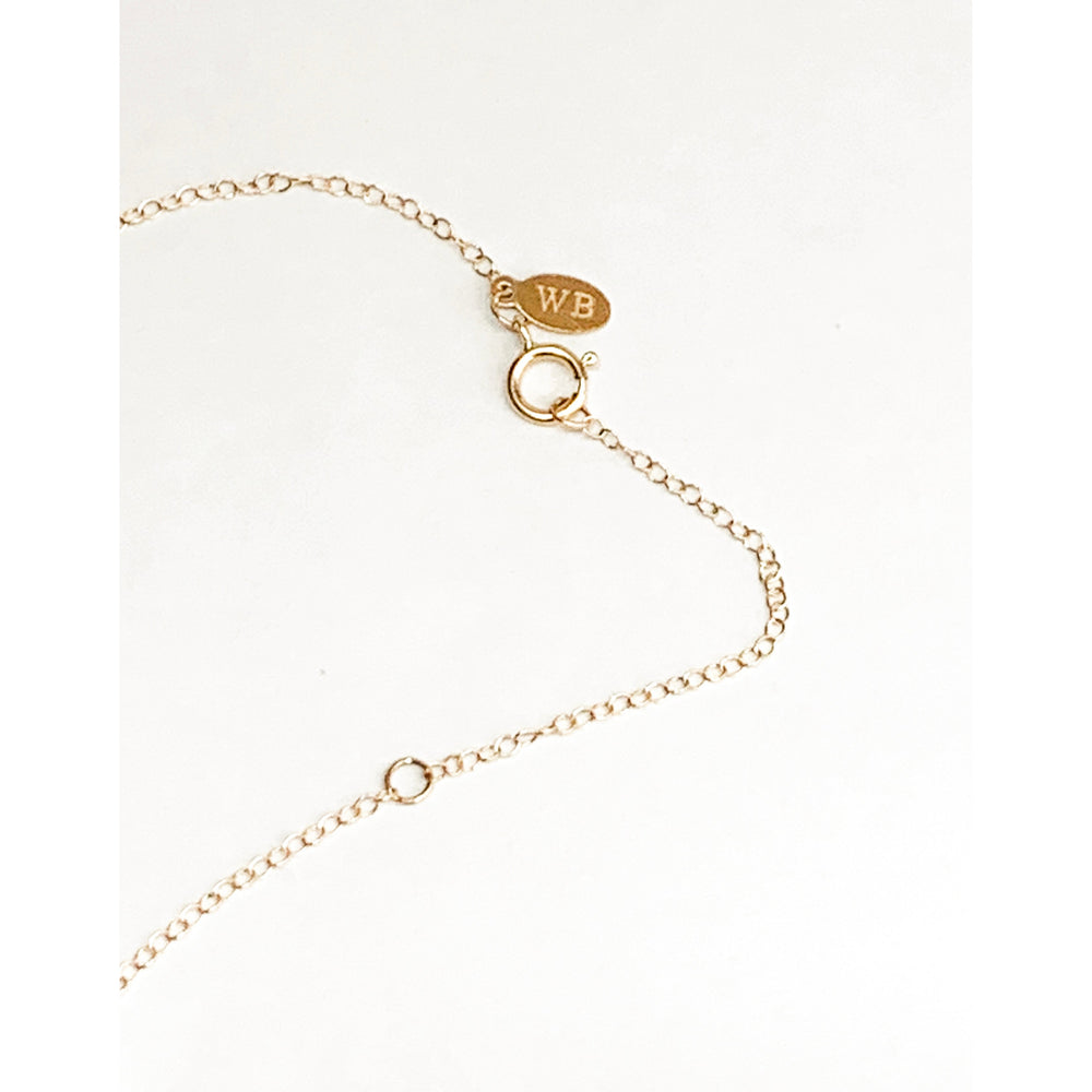 THE LUCKY HORSESHOE NECKLACE