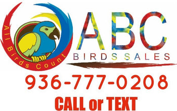 ABC BIRD SALES & MORE