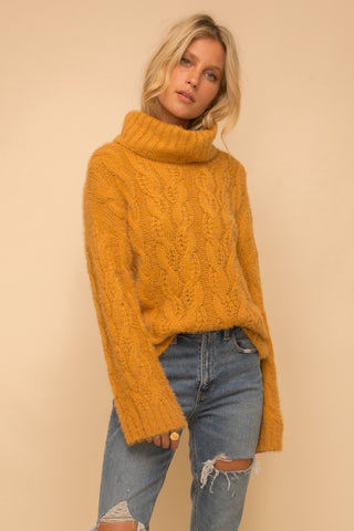Splendid Cozy Turtle Neck Sweater