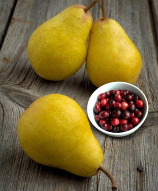 Cranberry - Pear White Balsamic Vinegar Condimento