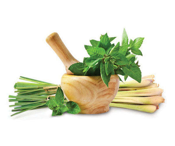 Thai Lemongrass – Mint White Balsamic Vinegar Condimento