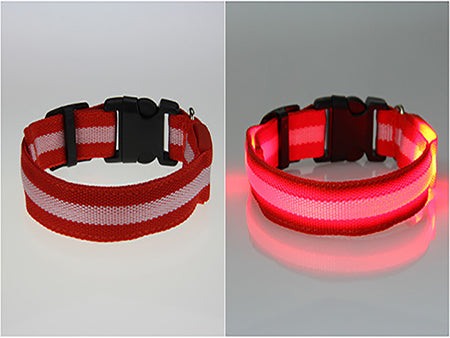 Pet Cat Dog Adjustable Glow LED Collar Flashing Light