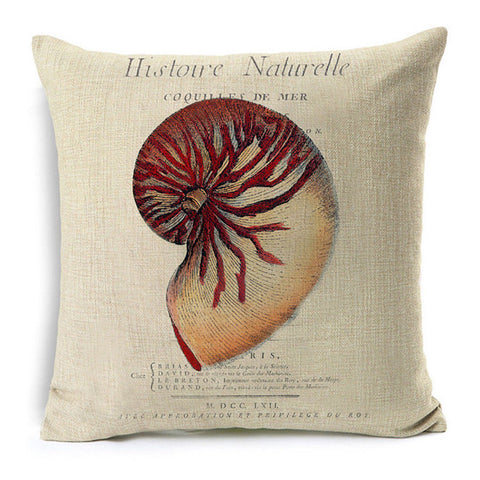 Shell Study Pillow