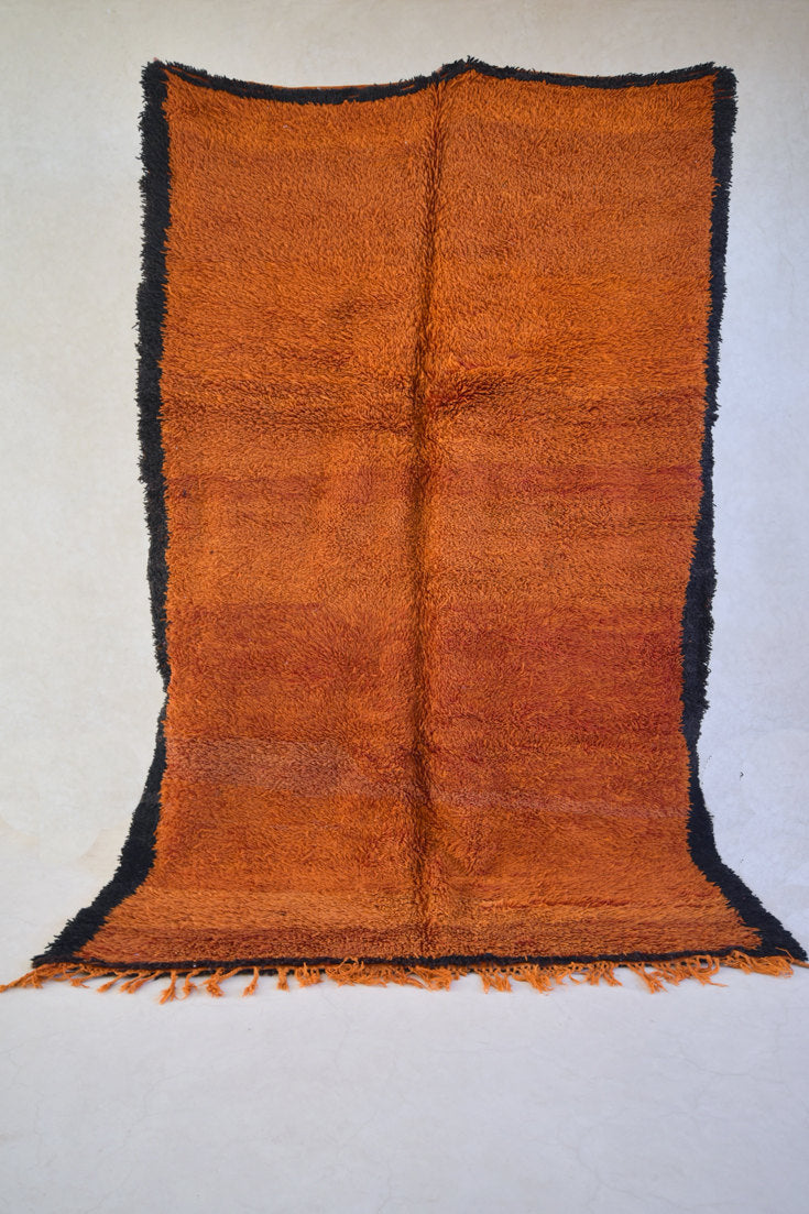 "RED EARTH Beni MGuild Rug 10'1""x6'5"""