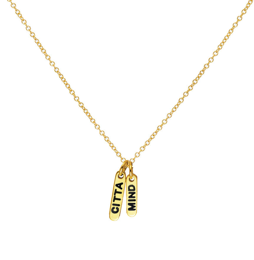 Amanda Charm Necklace