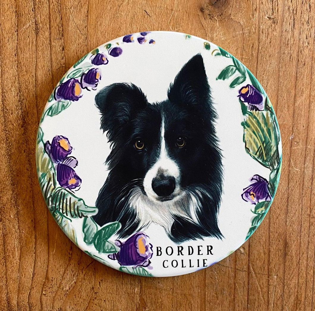 Sandstone border collie coaster