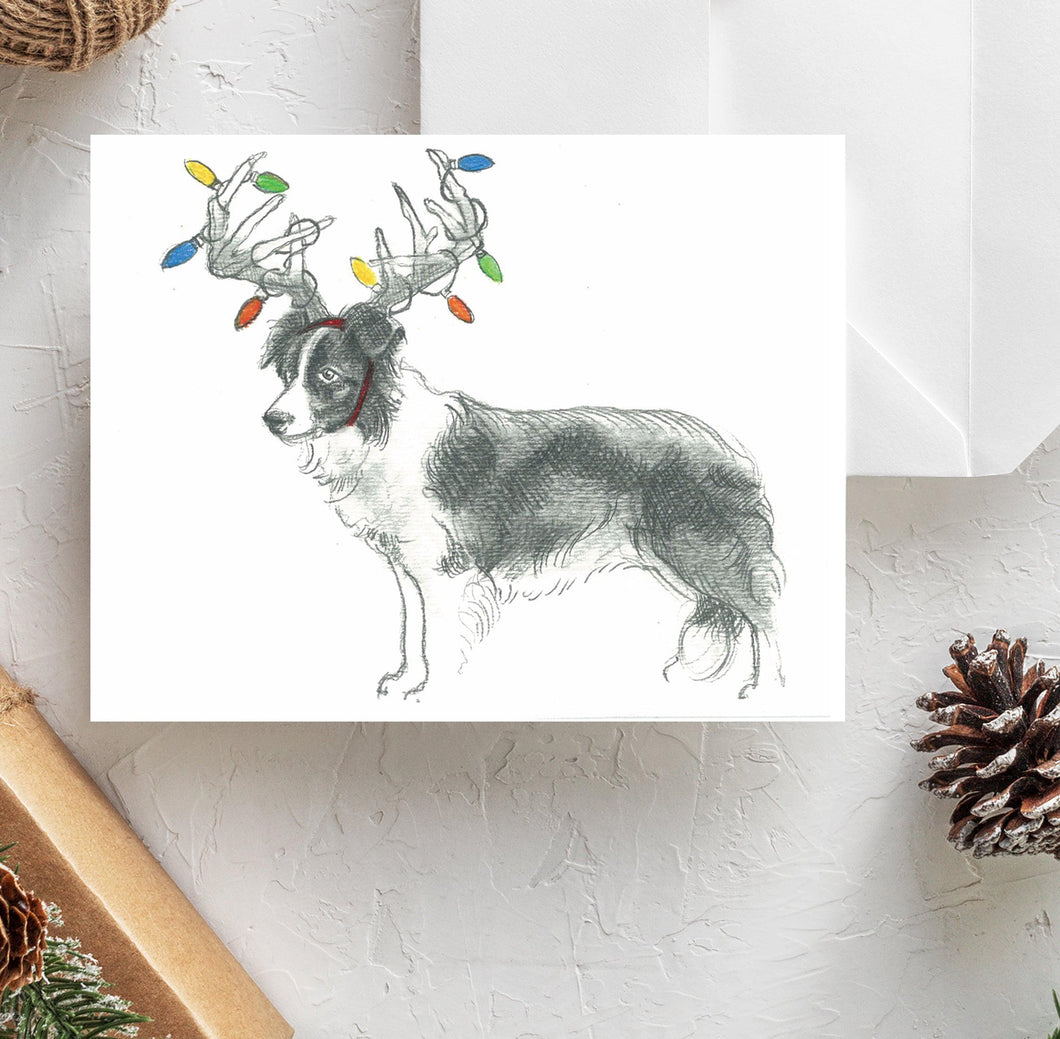 Border Collie Holiday Card