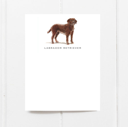 Chocolate Labrador Retriever Note Cards