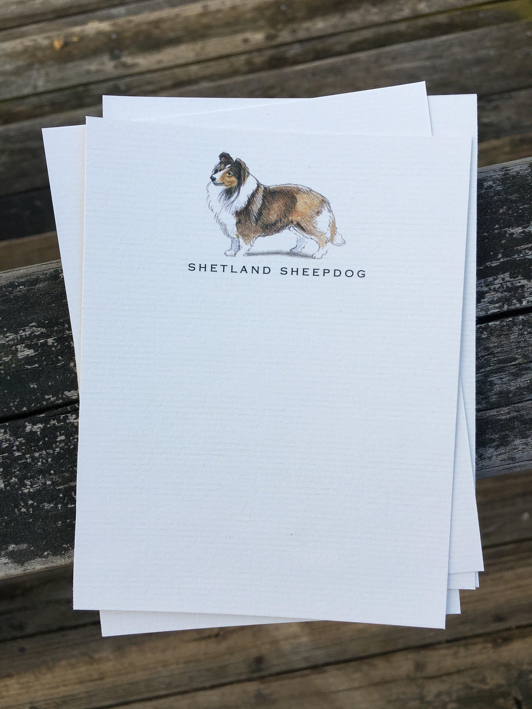 Buy elegant Shetland Sheepdog Notecards for $11.00 by Rachel Canada Artist