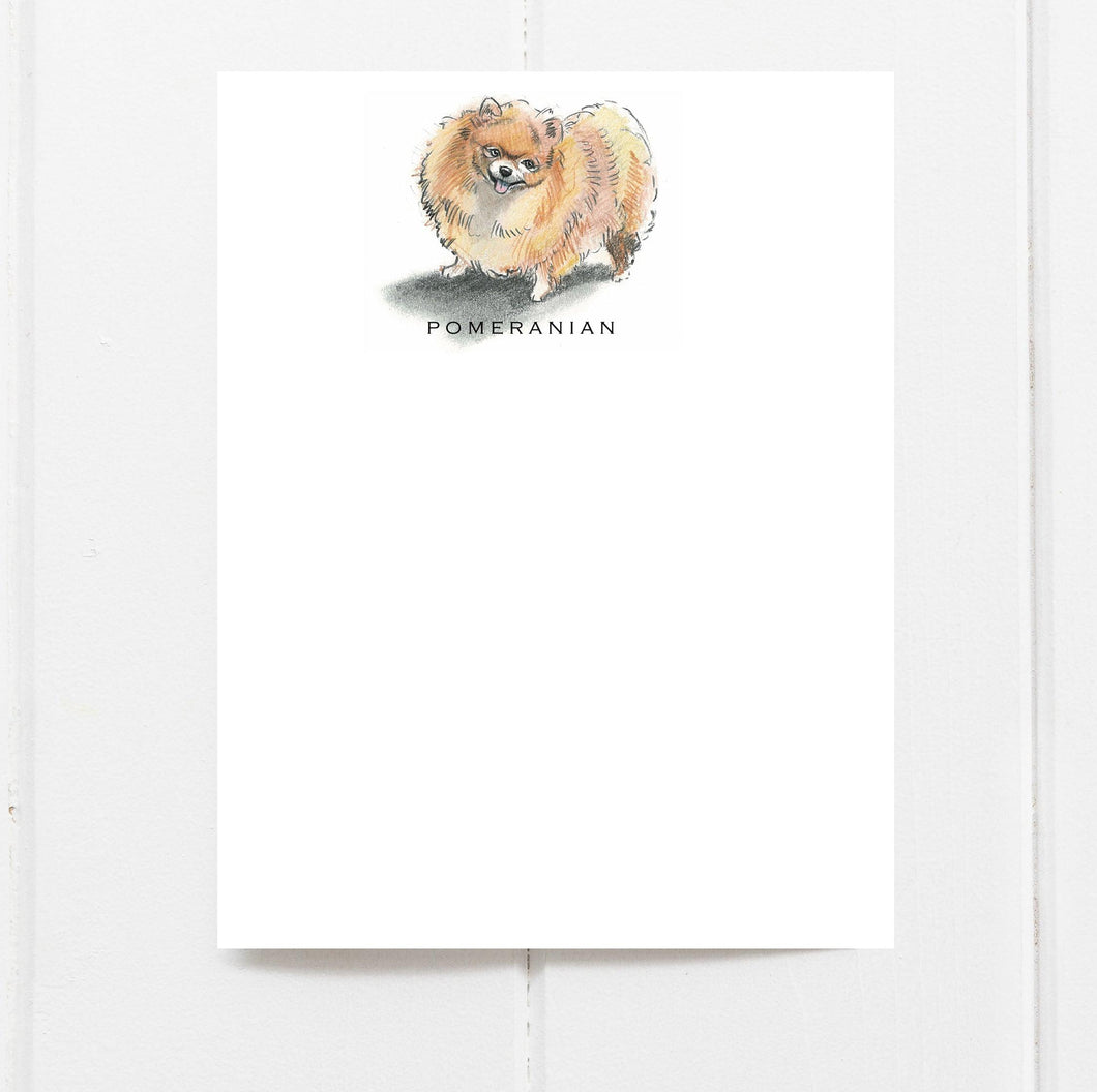 pomeranian note cards