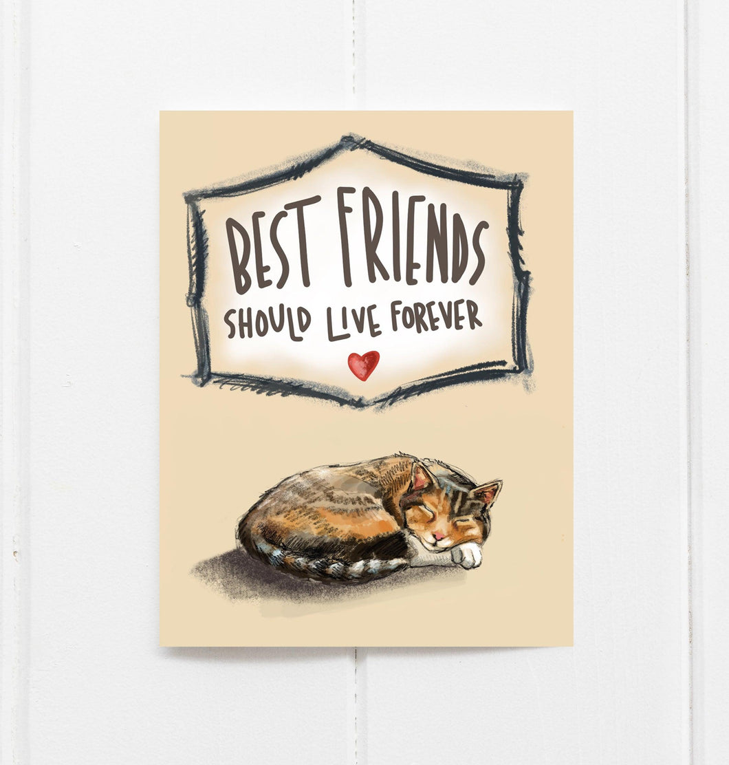 cat pet sympathy card
