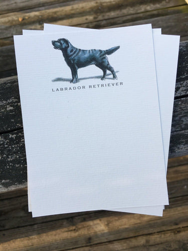 Buy elegant Black Labrador Retriever Notecards for $11.00 by Rachel Canada Artist