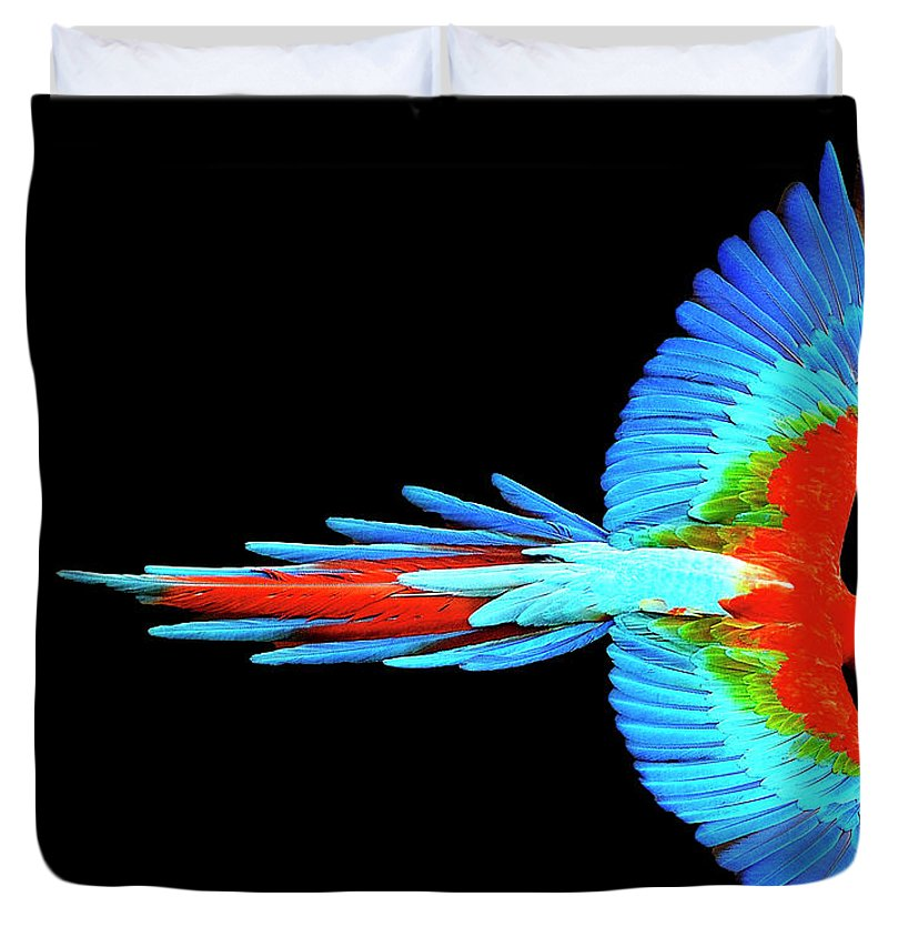 Colorful Parrot In Flight - Duvet Cover