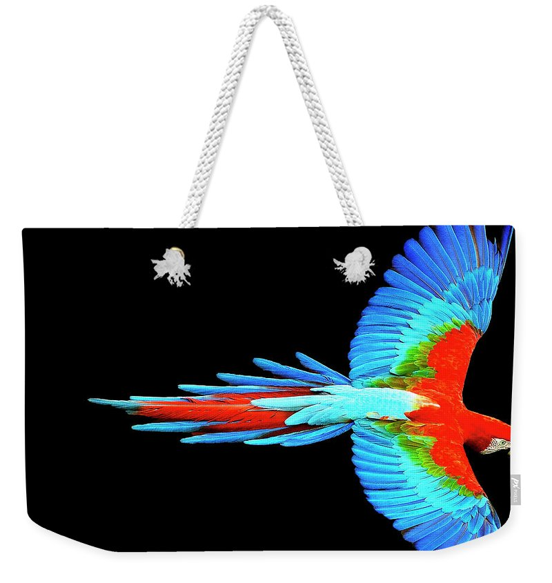 Colorful Parrot In Flight - Weekender Tote Bag
