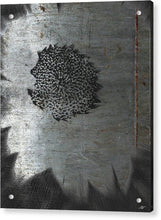 Dirty Silver Sunflower - Acrylic Print