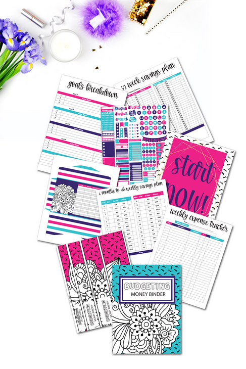 Budgeting Money Binder {220+ pages}