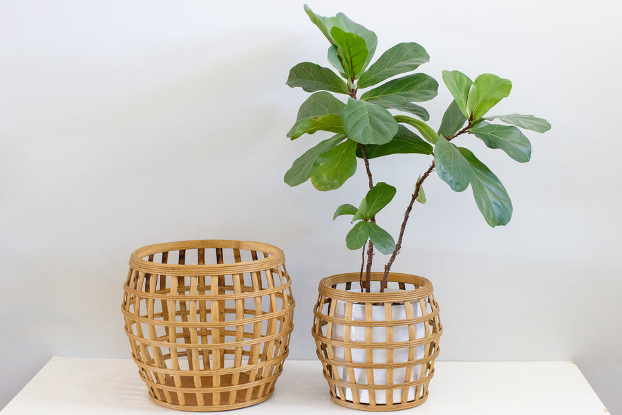 Bamboo Planter - Medium