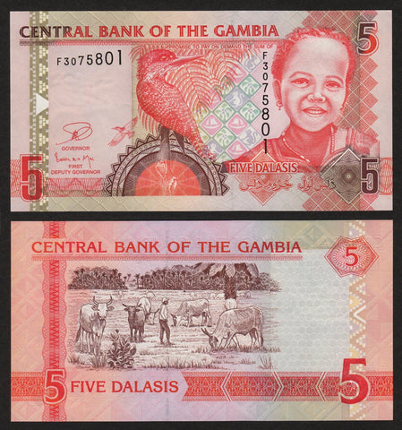 banknote of Gambia 5 Dalasis in UNC condition