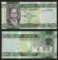 banknote of South Sudan 1 Pound in UNC condition