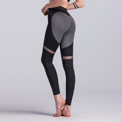 Klepto Yoga Pant Leggings