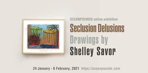 SECLUSION DELUSIONS by Shelley Savor