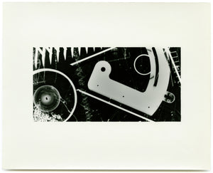 (Holly Lee) Photogram #3