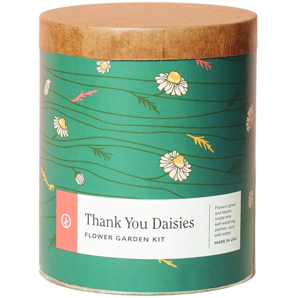 Modern Sprout Garden Thank You Daisies MODERN SPROUT Wax Planter