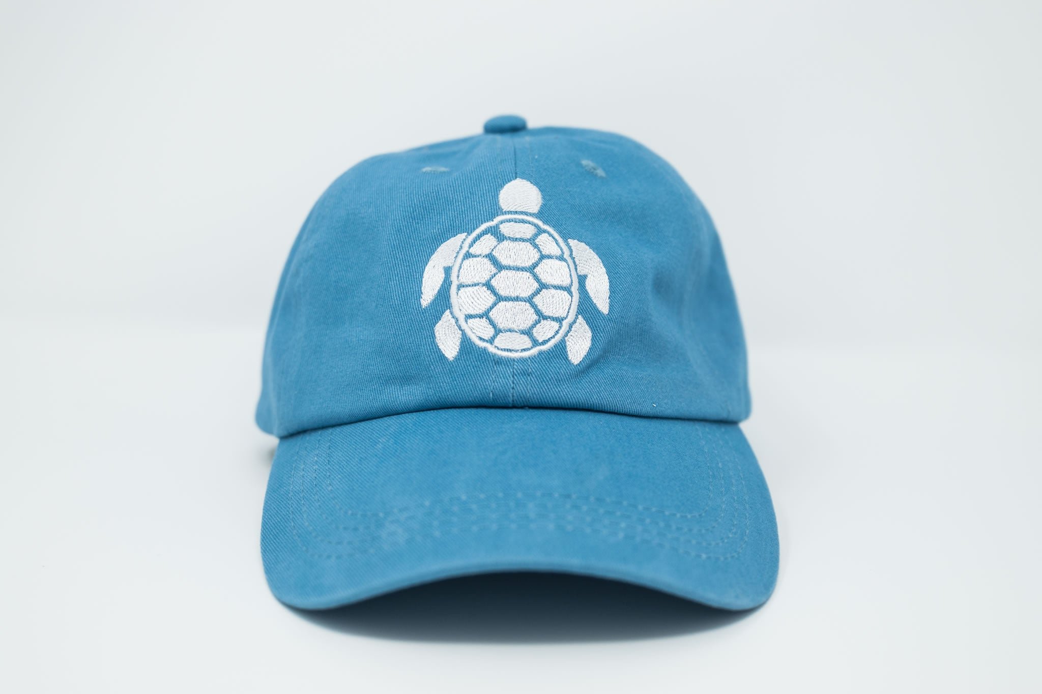 Sea Turtle Sky Dad Hat