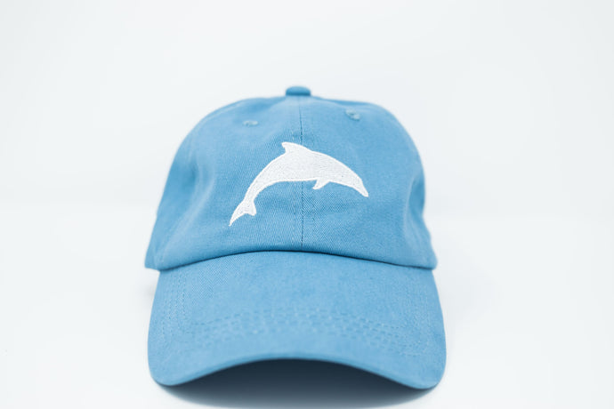 Dolphin Sky Dad Hat