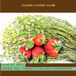 Herbal Tea - Camomile with Strawberry