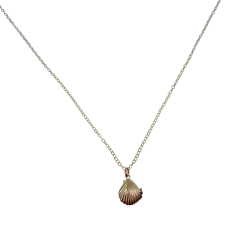 Golden Shell of Light Necklace