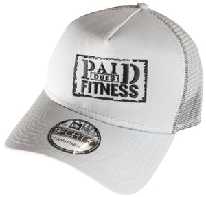 Paid Dues NEW ERA Cap GRAY