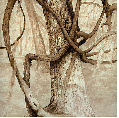 "Stephanie Clark - ""Vines"" Walnut Ink Drawing"