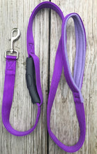 "1"" x 6' Nylon Leash With Fleece-Lined Handle and In-Line Handle"