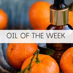 Grow Your Collection - Oil of the Week