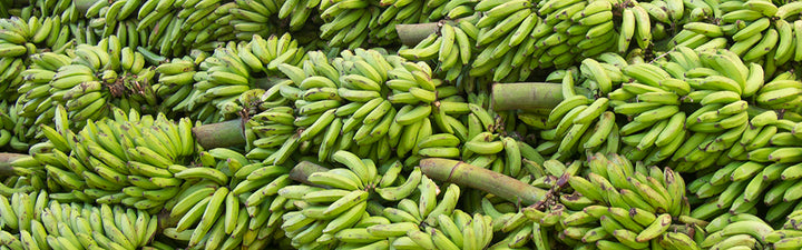 files/bananas_republic_d9b2bac6-00cb-4cd2-9944-e59603565c61.jpg