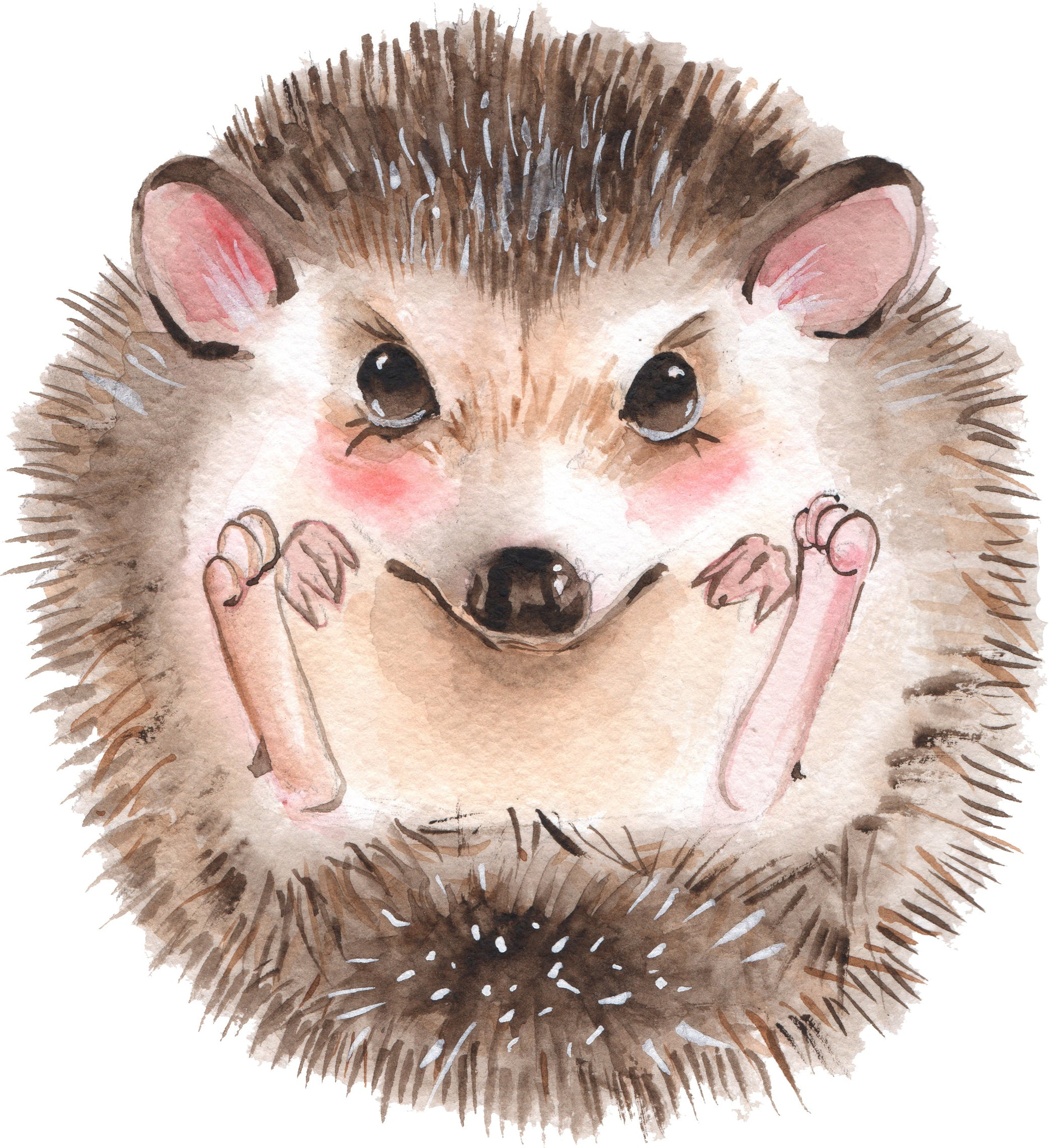 Adorable Happy Watercolor Art Curled Hedgehog Vinyl Decal Sticker