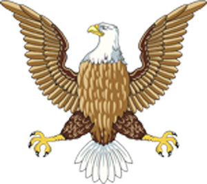 American Bald Eagle Light Dark Brown Yellow Black White Vinyl Decal Sticker