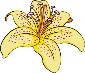 Beautiful Artistic Wild Floral Flower Cartoon - Yellow Lilly Vinyl Decal Sticker
