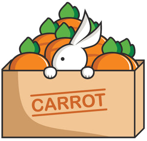 Cute Bunny Rabbit in Box of Carrots Cartoon Vinyl Decal Sticker