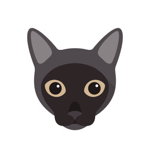Cute Burmese Kitty Cat Vinyl Decal Sticker