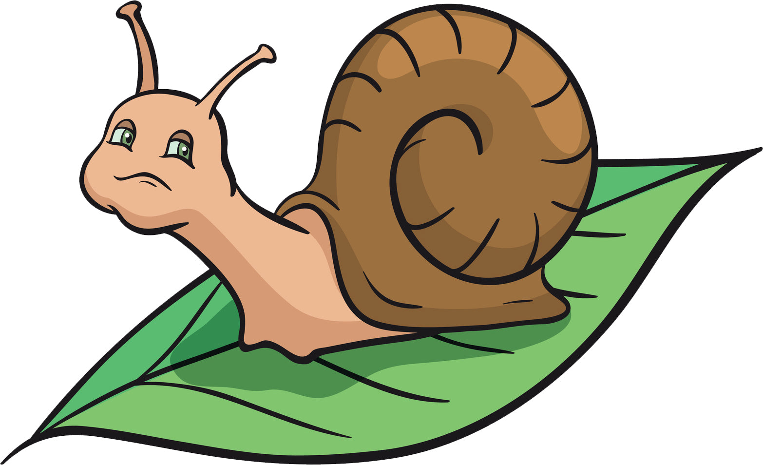 Cute Garden Snail on Leaf Pen Art Cartoon Vinyl Decal Sticker